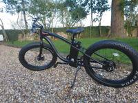 Electric Mountain Bike/Beach Bike for Sale