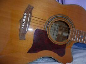 Tanglewood Guitar.