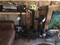 1000 watt electric scooter