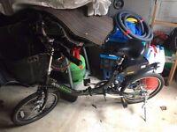 Ecostepper Electric Bike