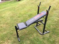 York Fitness 232 Fold Up Weights Bench £15