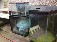 Fish tanks and bit