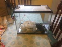 Fish Tank 19 Litres with extra's