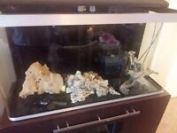 4ft fish tank with sump