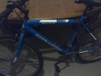 Mens rigid mountain bike, great condition
