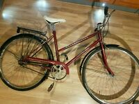 Hybrid Bike - Full Size - Working - Inc Pannier rack & mud guards