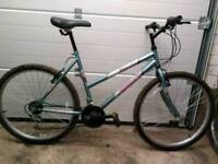 Women's mountain bike