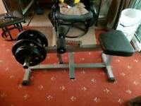 Seated calf raise with 40 kgs Olympic weights
