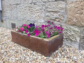 Converted stone water trough planter (plant pot)