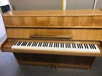 Callisia upright piano