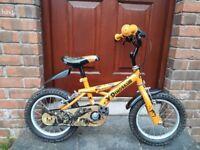 Boy's 14 inch dinosaur bike