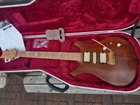 Vanquish Legend custom guitar