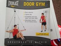 Everlast door gym