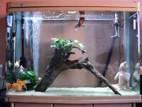 360 Litre Fish Tank