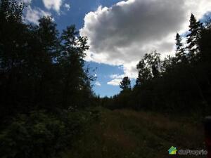 99 500$ - Terrain récréatif à vendre à Gracefield Gatineau Ottawa / Gatineau Area image 5