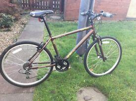 Gents Apollo Brown Bike