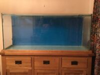Large Fish tank with sliding glass cover