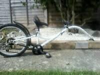 Bike ditto kids trailer