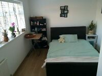 Spacious double room for single use in 3 bed house