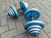 37KG CAST IRON WEIGHT DUMBBELL SET