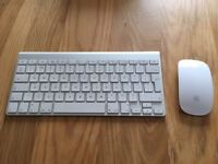 Apple Magic key board and mouse (Original version)