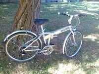 Folding Bike (Dahon Espresso)
