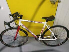 Piccadilly Vertigo road bike