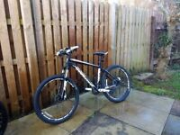 Specialized Rockhopper, excellent condition mountain bike, reduced to £200.