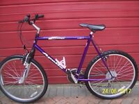 APOLLO PRODIGY GENTS MOUNTAIN/ROAD BIKE WITH 26 INCH WHEELS