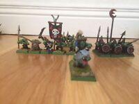 Warhammer Fantasy Goblins