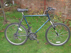 RALEIGH ACTIVATOR MTB ONE OF MANY QUALITY BICYCLES FOR SALE