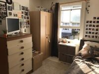 SINGLE FURNISHED ROOM IN KEMPTOWN, BRIGHTON. BRIGHT, CLEAN AND NEXT TO BUS STOP