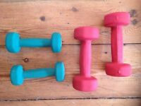 Reebok Dumbells 2x1kg and 2x2kg