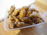 Jerusalem artichoke tubers (about 500 grams)-beneficial to diabetics.