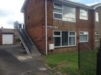 One bedroom flat golf course road Shiney row to let