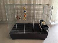 Parrot birdcage