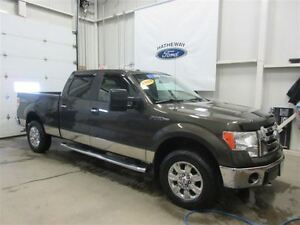 2009 Ford F-150 XLT - AS TRADED