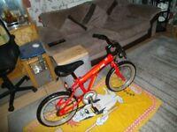 Young boys bike