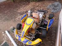 2008 cmc full racing go-kart