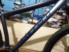 cerrera sulcata 29 inch mountain bike