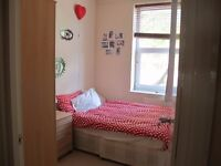 **Lovely 1 double bedroom to rent**