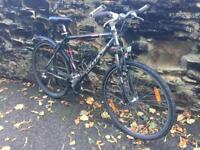 Kelly mountain / hybrid bike