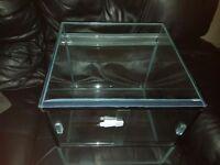 Custom Aquaria Glass Viv 35x35x35
