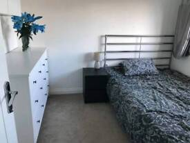 Double and single room available to rent