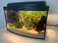 Fish tank 26 ltrs