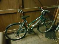 Ladies Aspen Mountain Bike