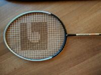 badminton racket Gosen grapower 900Ti