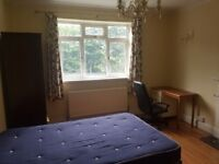 No Admin Fees , ONE DOUBLE BEDROOM share, City Centre, the Sheffield University, Furnished.
