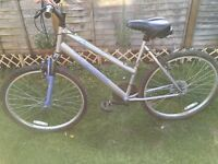 Two mountain bikes up for grabs in fantastic condition. 1 x Apollo 1 x Muddy Fox ��80.