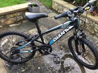 """Giant XTC 20"""" wheels boys bike"""